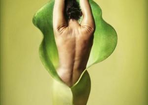 обертывания тела